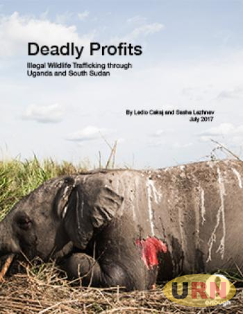 Cover: The carcass of an elephant killed by militarized poachers. Garamba National Park