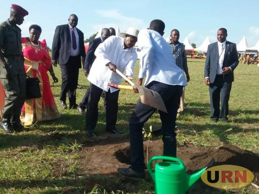President Museveni Planting a Tree At Atiak Technical Institute in Amuru District
