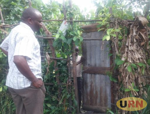 A gate to Juma's fenced vanilla garden. Many farmers have resorted to buying expensive barbed wire in order to protect their crops from being stolen.