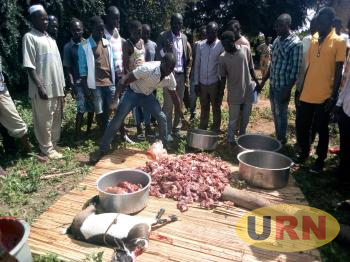 Angry NRM supporters pouring down the meat they rejected at NFA grounds in Mvara