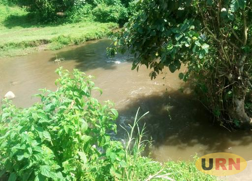 River Nsongya in Bunyangabu district where residents of Kisomoro and Kiyombya Sub-counties normally fetch their water from.