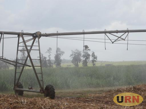 Motorised irrigation being used on a sugarcane plantation. Farmers with inadequate facilities such as this face the brunt of climate change.